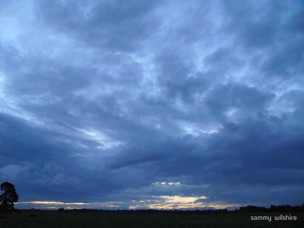 skys in  turmoile by sammy  wilshire