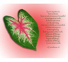 1 Corinthians 13 . . . Love is . . . Photographic Print
