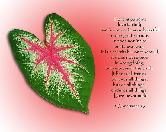 1 Corinthians 13 . . . Love is . . . by Bonnie T.  Barry