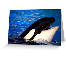 Happy Orca Greeting Card