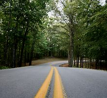 Lake Cumberland Park Road by Anthony Pierce