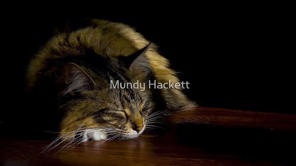 Sunbeam by Mundy Hackett