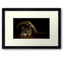 Sunbeam Framed Print