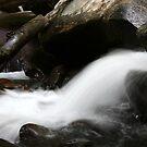 Chimney Top Stream by Anthony Pierce