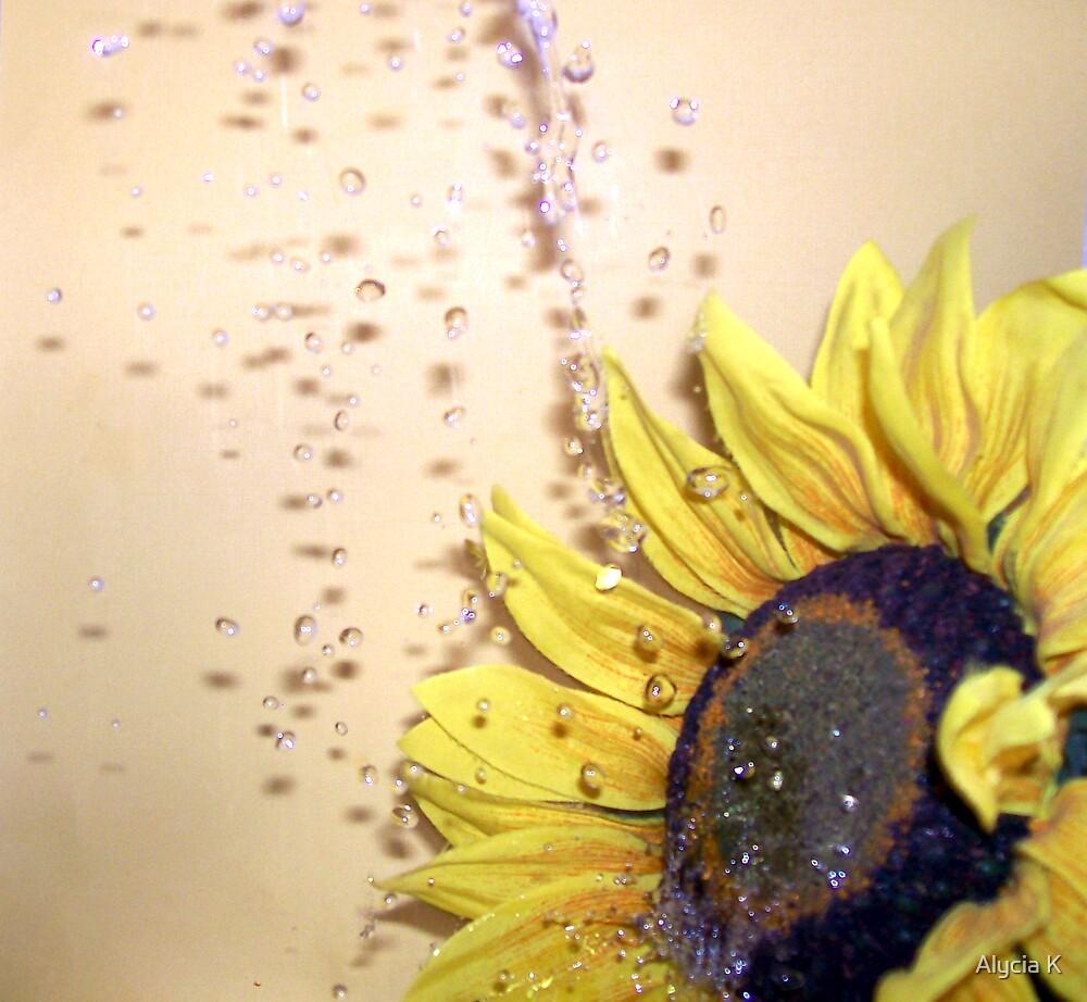 Sunflower by Alycia K