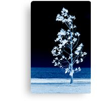 The Night Wind Has Secrets To Tell Little Tree Canvas Print