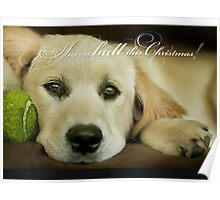 Have a ball this Christmas....CHRISTMAS CARD!! Poster
