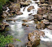 Waterfall, Doubtful Sound by Stephanie Johnson