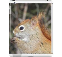 Ah Nuts, You Make My Eyes Sparkle! iPad Case/Skin