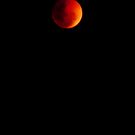 Lunar eclipse in brisbane by Nicole Goggins