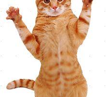 Kitty Cat by Kara  Davison