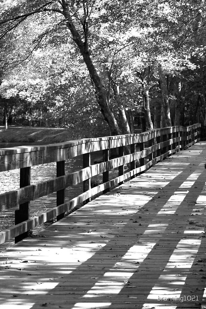 Bridge by branning1021