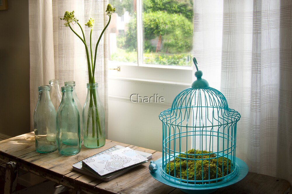 Bird Cage 2 by Charlie