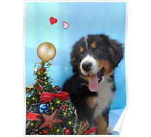 Puppy with its Christmas tree Poster