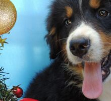 Puppy with its Christmas tree Sticker