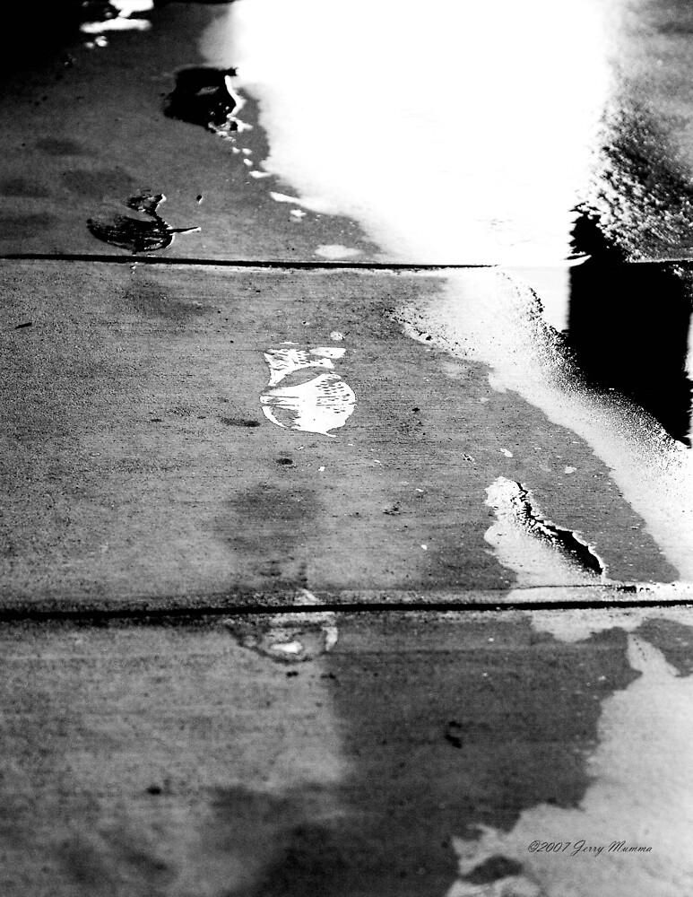 Walking in the Rain by Jerry  Mumma
