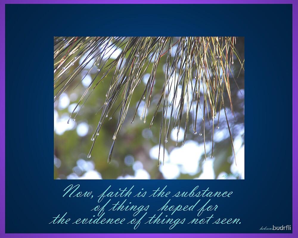 faith is the substance by budrfli