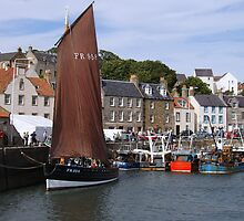 The Reaper at Pittenweem by johnbb