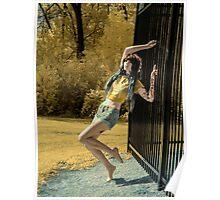 Morgin Fence IR  Poster