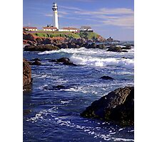 Pigeon Point Lighthouse Calf Photographic Print