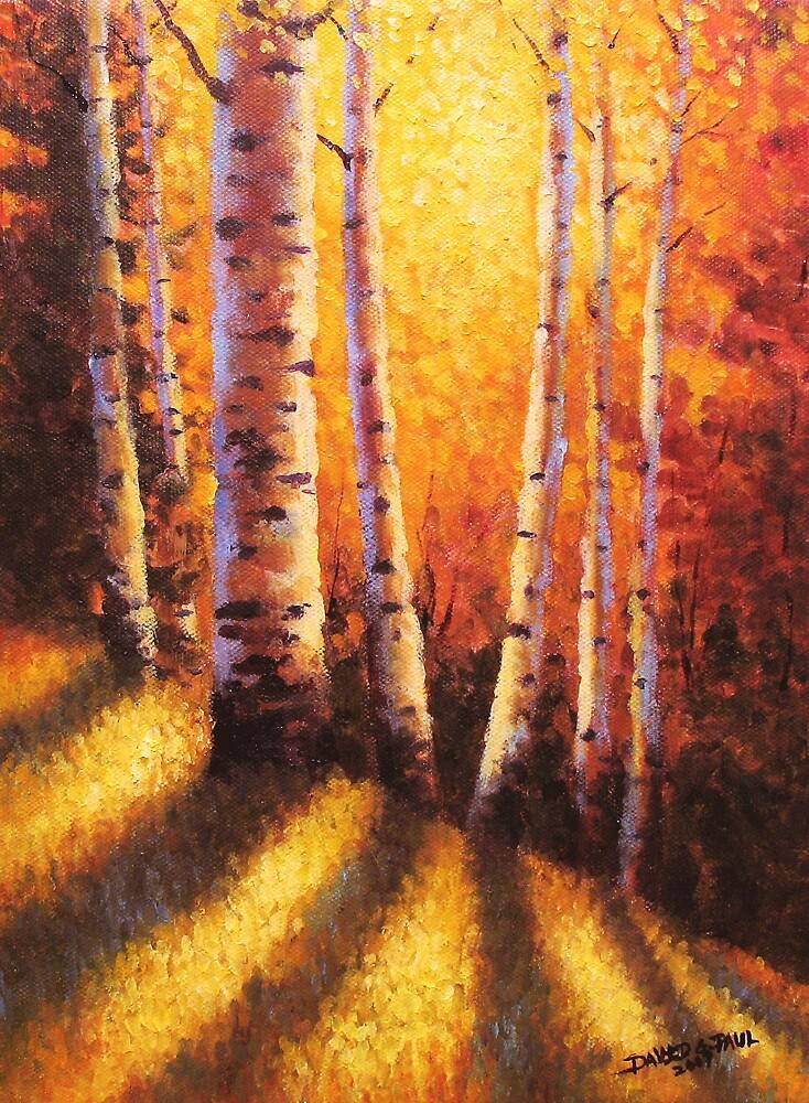 Sunlight Through The Aspens by David Paul