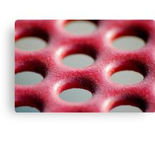 dirty red macro Canvas Print