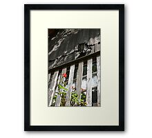 Juliet's Balcony. Framed Print