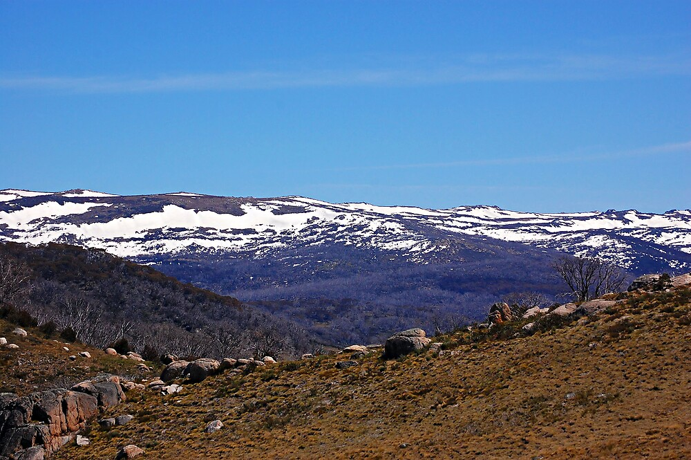 Snowy Mountains, Australia. by David  Hall