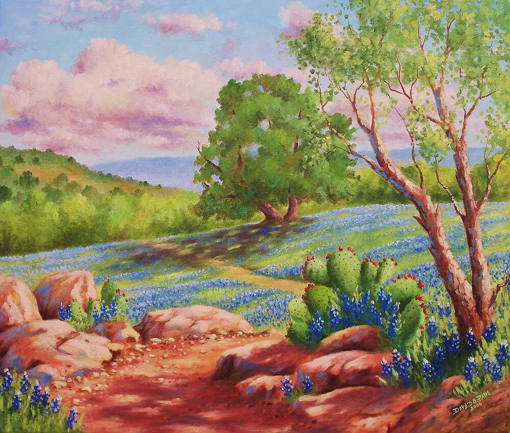 Bluebonnet Trail by David Paul