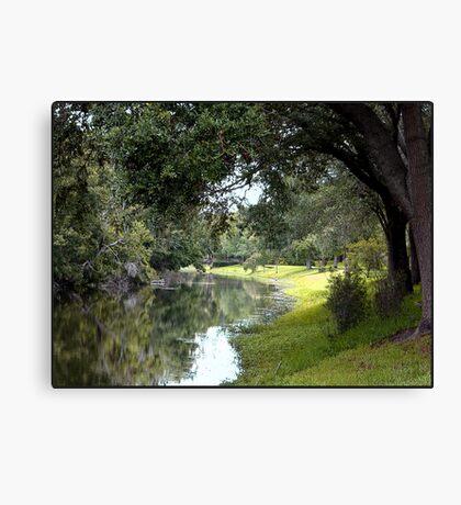 Stream at Sawgrass Park Canvas Print