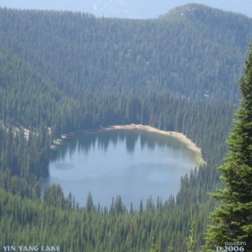 Yin Yang Lake by davidbro