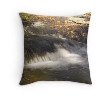 flowing waters Throw Pillow