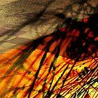 Orangescape by Zern Liew