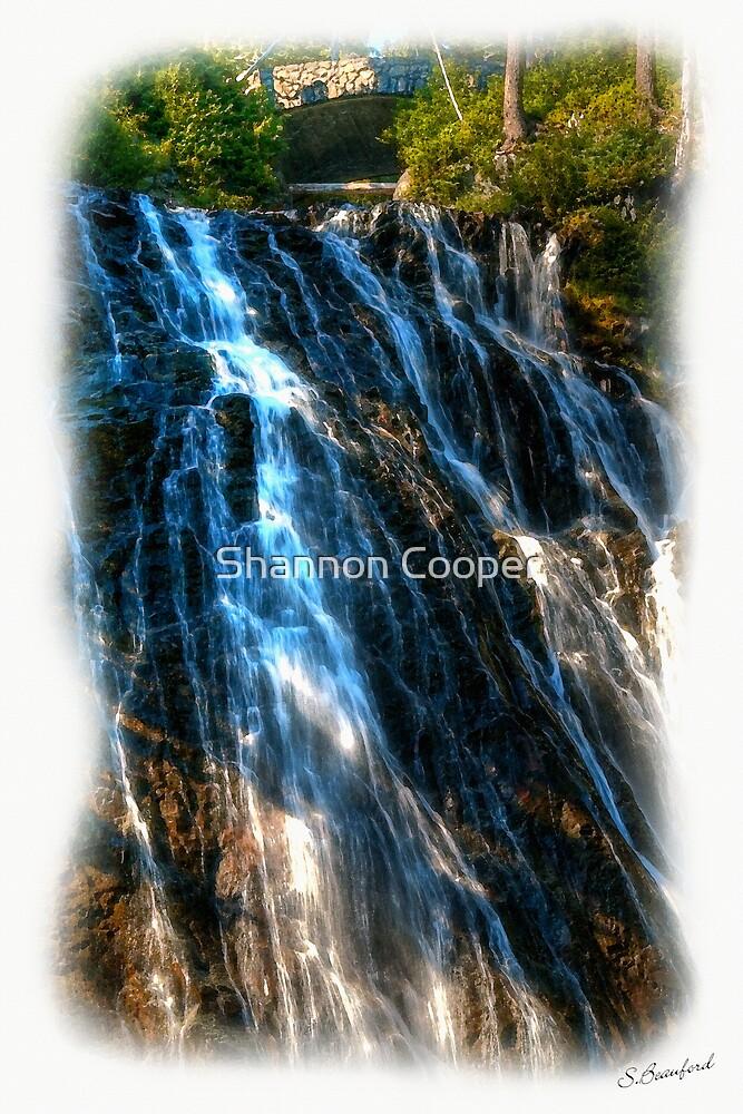 Narada Falls by Shannon Beauford