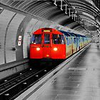 Lonely Underground by David Elliott