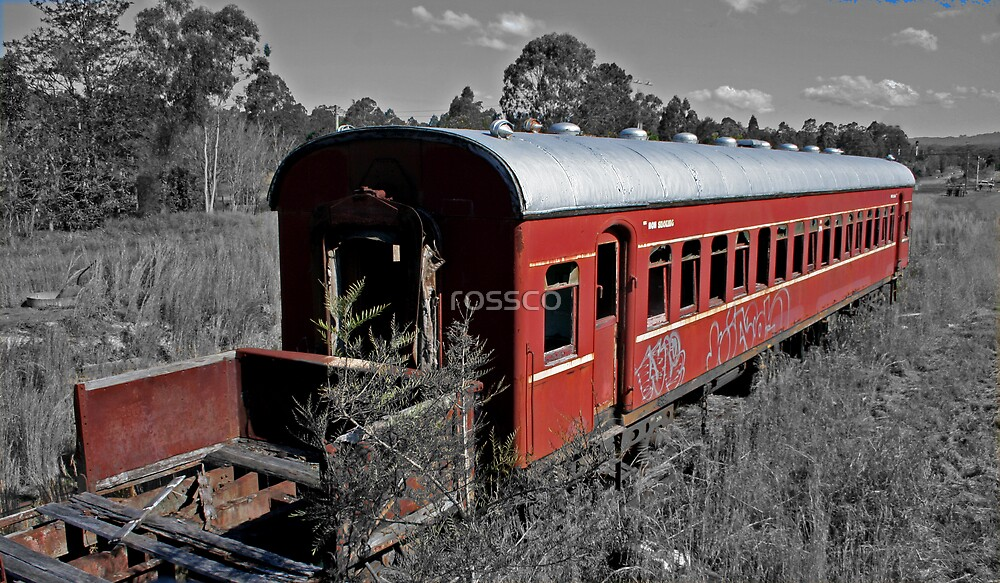 The Red Rattler by rossco