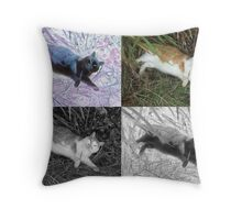 Cat Squared Throw Pillow
