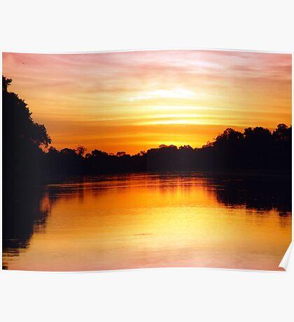 Pantanal Sunset 1 Poster