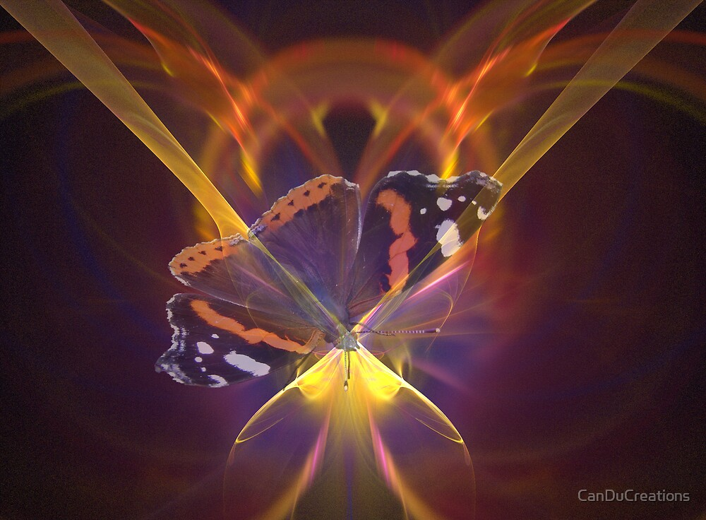 Butterfly magic by CanDuCreations