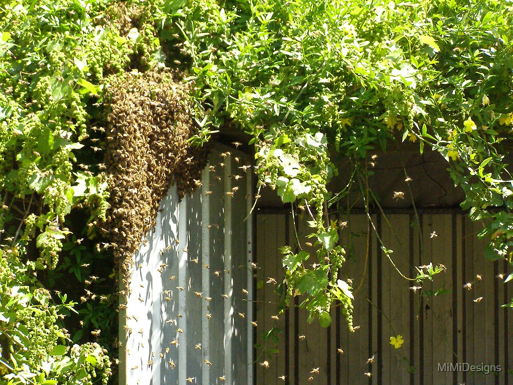 swarm by MiMiDesigns
