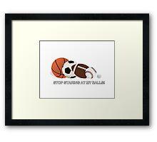 Sports Fan Framed Print