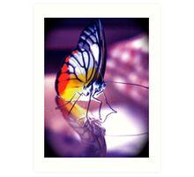 Chloe's Little Butterfly - Krystal Art Print