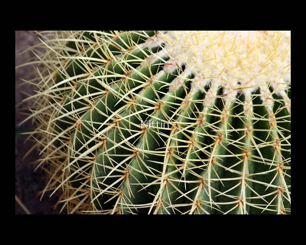 cactus 09 by Kittin