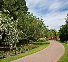 Along the garden path by PhotosByHealy