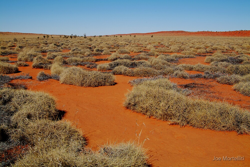 Spinifex Valley, Madigan Line, Simpson Desert by Joe Mortelliti
