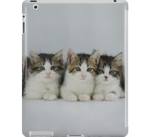 Five Brothers  iPad Case/Skin