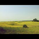 Saskatchewan - Road Trip by RobertCharles