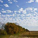 Saskatchewan - Living Skies by RobertCharles