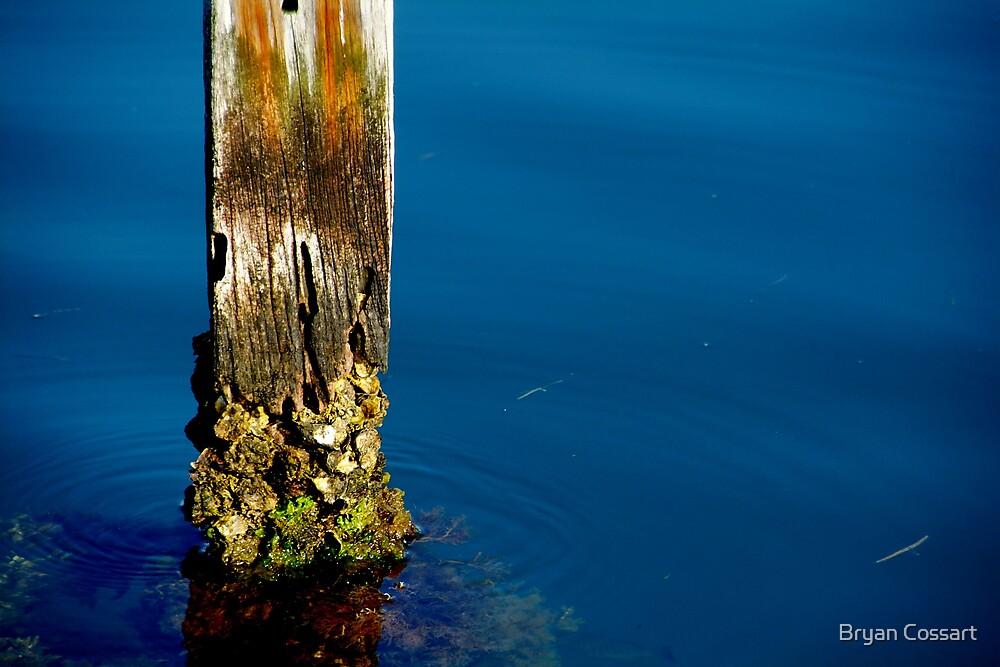 Crusty pole by Bryan Cossart