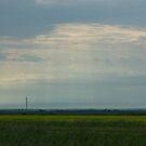 Saskatchewan - Field by RobertCharles